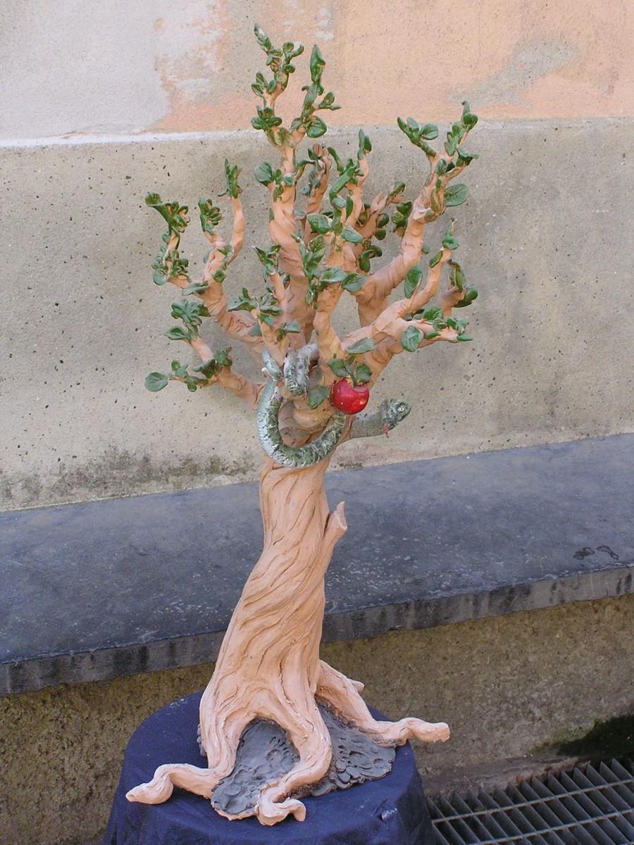 albero 66x26